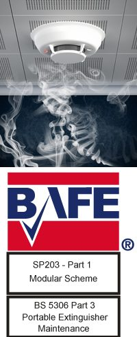 BAFE Logo with detector